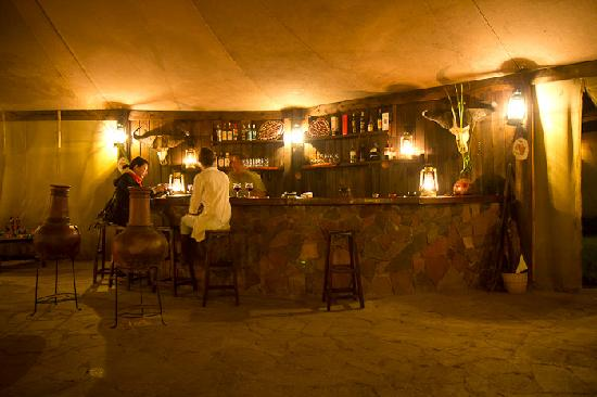 Cheetah Tented Camp: Wine bar
