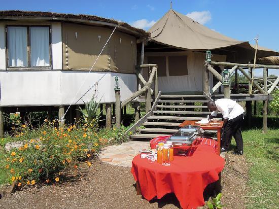 Cheetah Tented Camp 사진