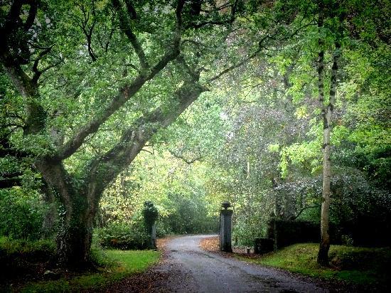 Tullamore, Ireland: Garden