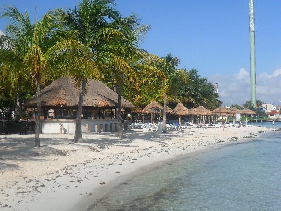 Oasis Palm: vista playa hotel en la mañana