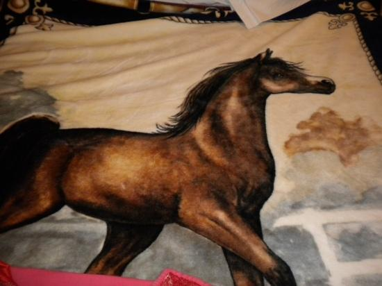 Hotel La Diligence : the horse blanket decorating the room