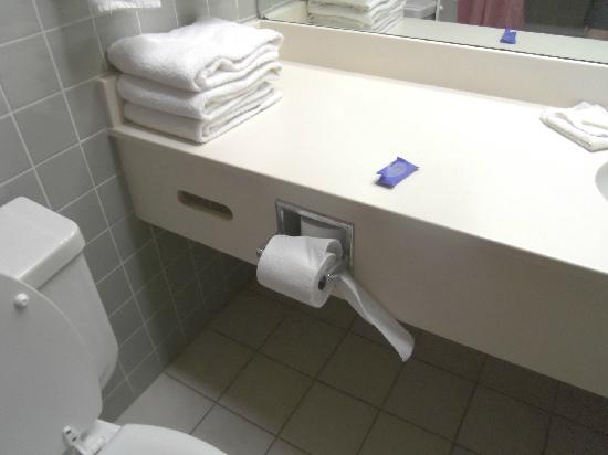 Carlsbad, Nowy Meksyk: toilet paper unkept last thing t want to think about is the last person that stayed in the room.