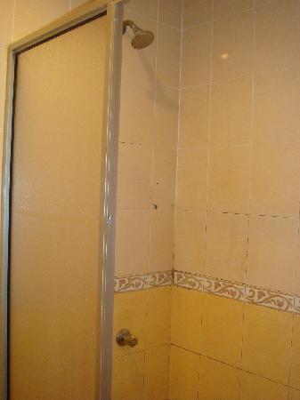 Hotel City View: shower