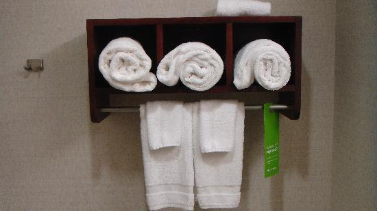 Hampton Inn & Suites West Point: Always PLENTY of WHITE CLEAN towels