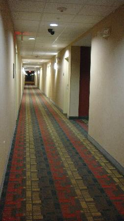 Hampton Inn & Suites West Point: Common areas clean and fresh