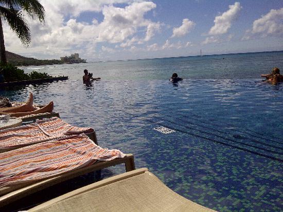 Sheraton Waikiki: Infinity pool view