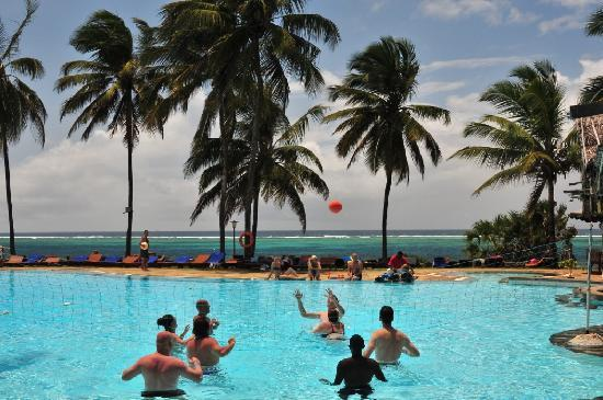 Reef Hotel : Pool Volleyball