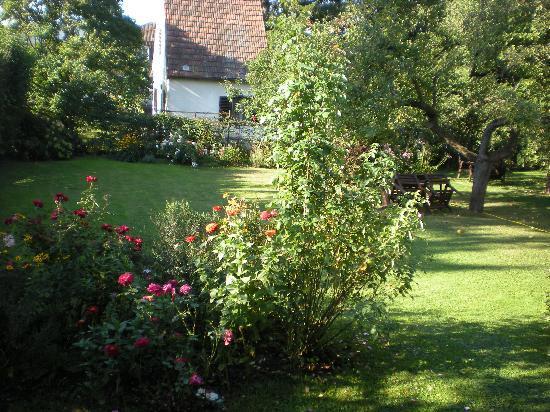 Pension Anzengruber: Der Garten