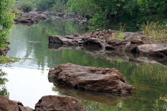 Harithavanam Farm House: River Periyar in the backyard
