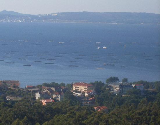 Hotel Bosque-mar: vista hotel desde siradella