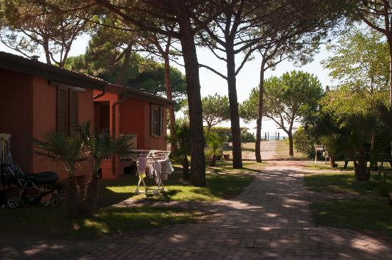 Albinia, Italia: Villino Giannutri - mare