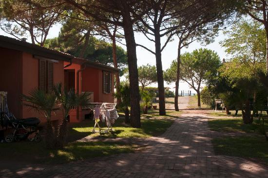 Albinia, İtalya: Villino Giannutri - mare