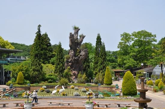 nagoya botanical garden - Picture of Higashiyama Zoo ...