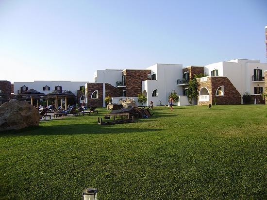 Aegean Land: The lawn next to the pool