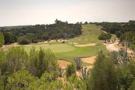 Citrus Golf Course : La Forêt Course
