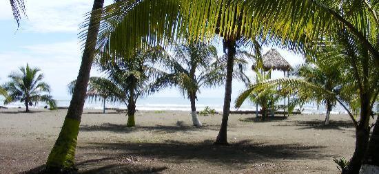 Hotel Playa Westfalia: Playa
