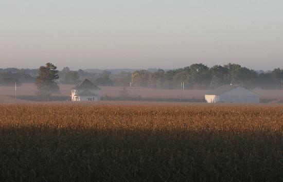 Grannys Farm Bed & Breakfast : Sunrise on Grannys Farm