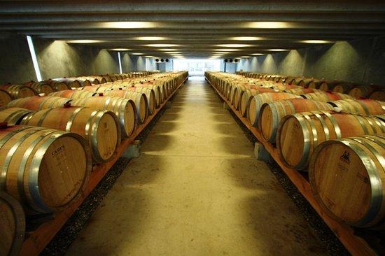 Peregrine Wines: Inside Wine Cellar