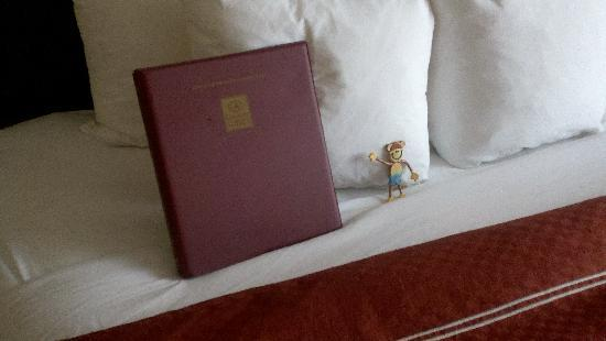 Comfort Suites Downtown Buffalo: Mojo checks out the bed comfort