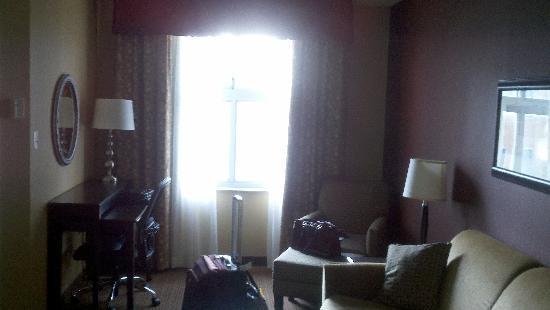 Comfort Suites Downtown Buffalo: Living room area, great work space and entertainments space! Games and DVD