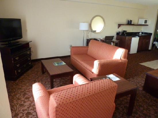 Comfort Suites Dulles Airport: Nice living room