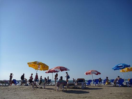 Tal Hotel, Tel Aviv - an Atlas Hotel: public beach