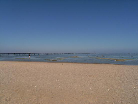 Jaz Mirabel Beach: beach