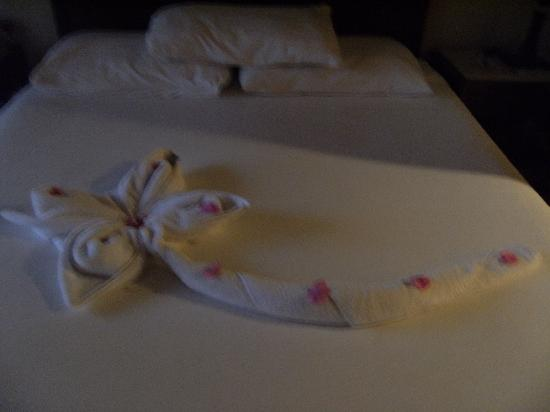 Jaz Mirabel Beach: little touches by the cleaning staff