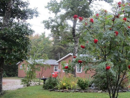 Roseway River Cottages : beautiful