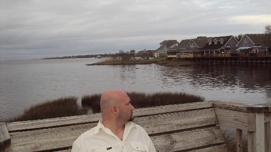 Coastal Cantina : view