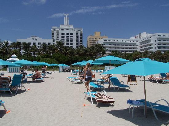 The Palms Hotel & Spa: Vista de la playa