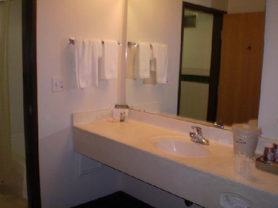 AmericInn Lodge & Suites Oscoda - AuSable River: Bathroom vanity