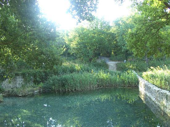 La Pieve di San Martino: Gracciano