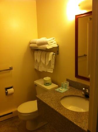 Simplicity Inn Hershey: Bath