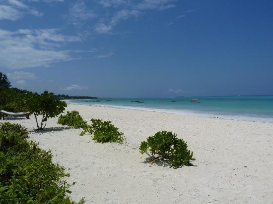 Pwani Mchangani, Tanzanya: Beach 2