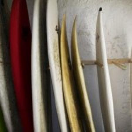 Surf Hostel Bed & Breakfast : Free surf board rental