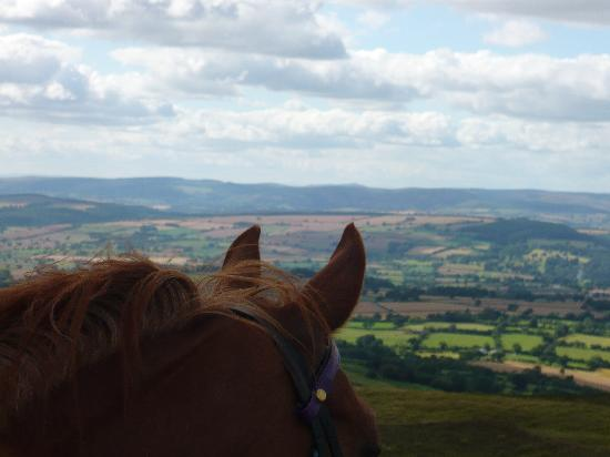 The Old Rectory Bed and Breakfast: Great View from Brown Clee Hill
