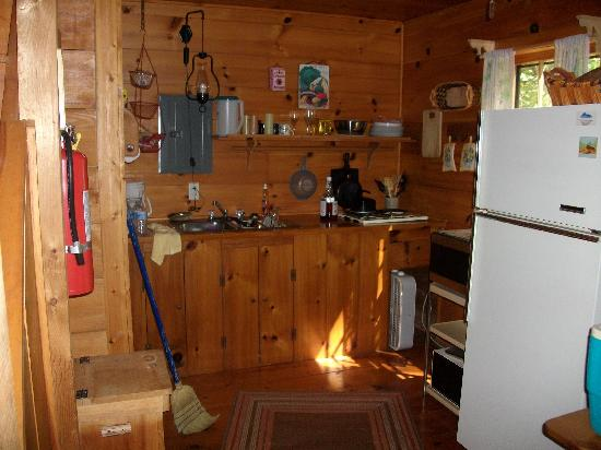 Henson Cove Place B&B: Cabin Kitchen