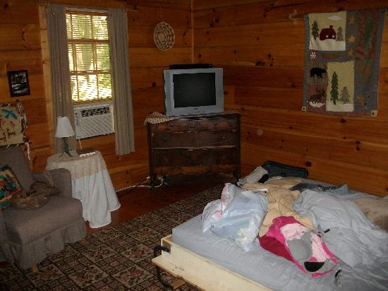 Henson Cove Place B&B: Cabin Bedroom/Living Room