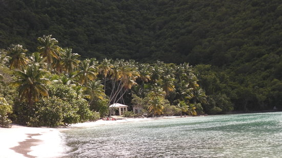 Maho Bay: walking in from goat trail