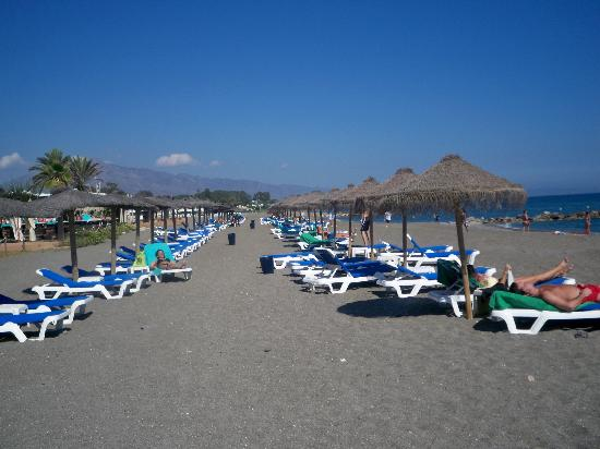 Beach At The Hotel Picture Of Hotel Guadalmina Spa Golf Resort