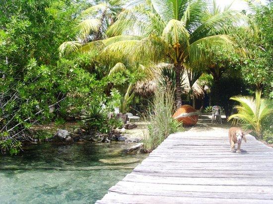 Laguna Azul : muelle privado