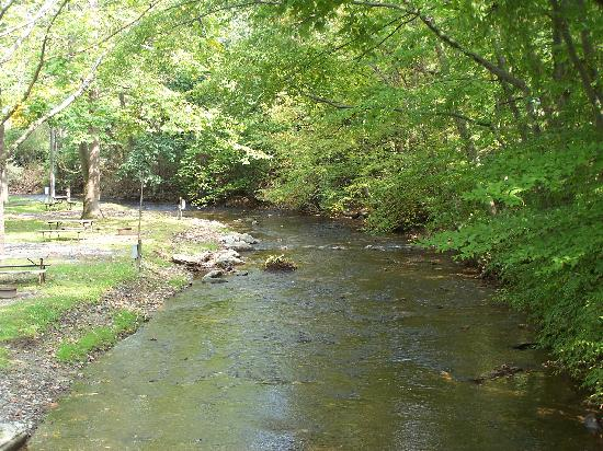 Allentown KOA Campground: The stream