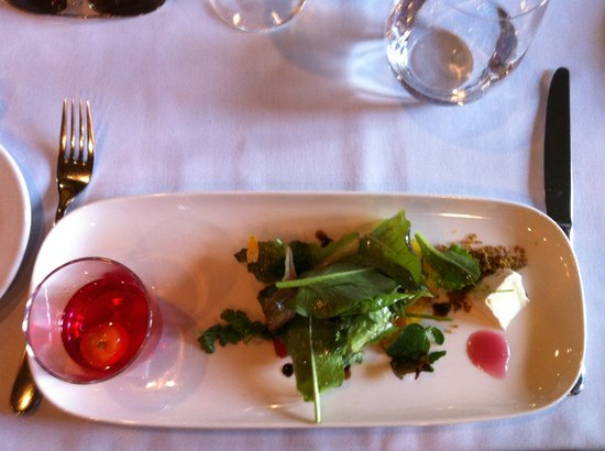 Aura Restaurant: Rooftop garden salad with clarified gazpacho shot. Delicious and beautiful!