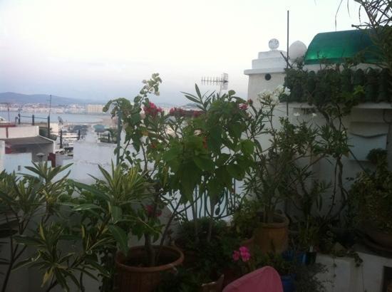 MAISON HASSANI: vue depuis la terrasse