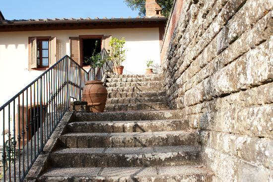 Villa Rossi-Mattei: steps leading to the pool area