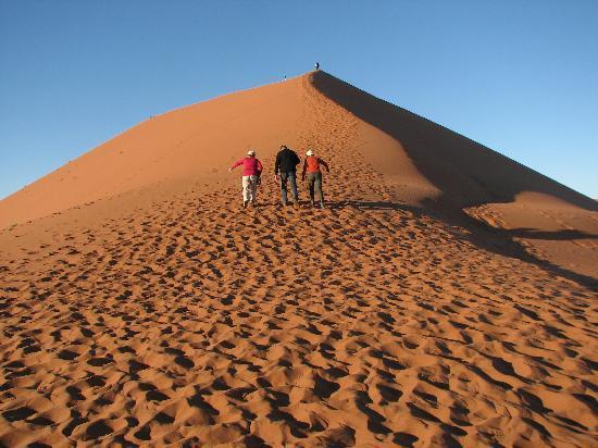 Sossusvlei: magnificent sandhill