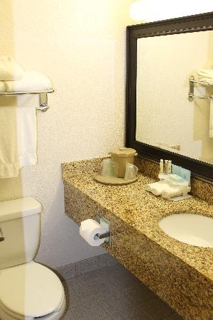 Baymont Inn & Suites Murray/Salt Lake City: room 3