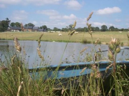 Logis des Aulnays : plan d'eau