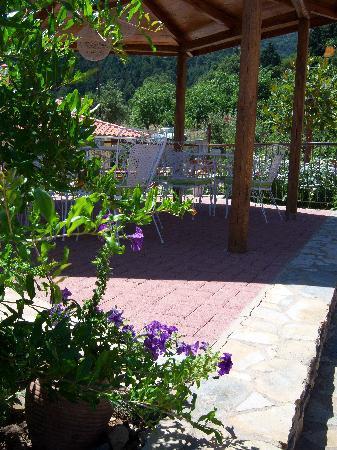 Ilaeira Mountain Resort: A relaxing spot to drink your coffee at Ilaeiras gardens !